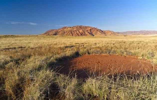 krugovi u namibiji