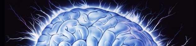 ljudski-mozak