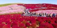 cvijetni-park