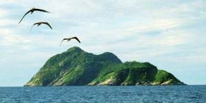 Otok-Zmija