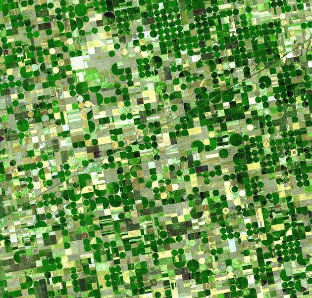 Polja u Kansasu, SAD