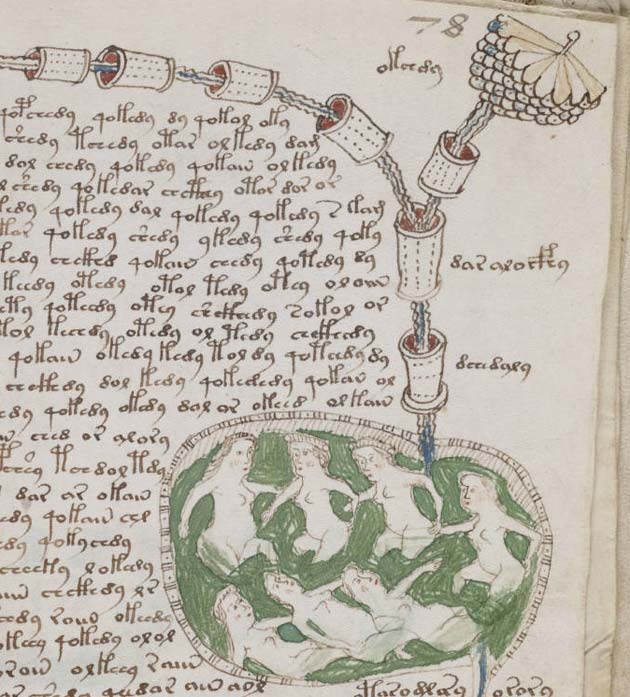 Voynichev-rukopis2