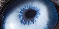 0 oko