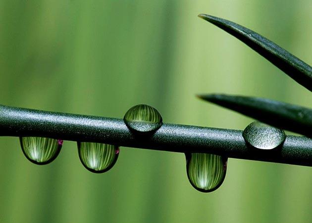 Odraz-u-kapljici-vode8