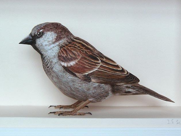 ptice-od-papira1