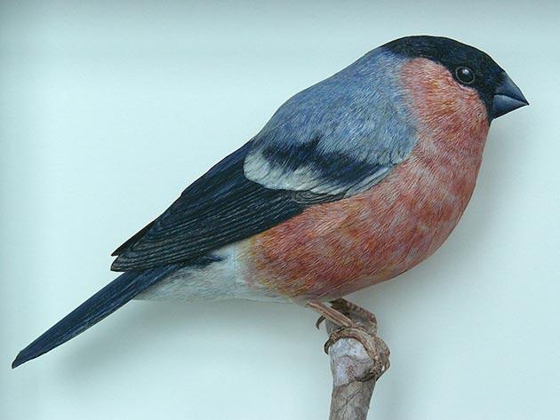 ptice-od-papira2
