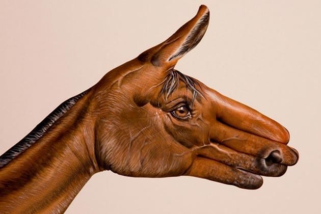 zivotinje-na-rukama8