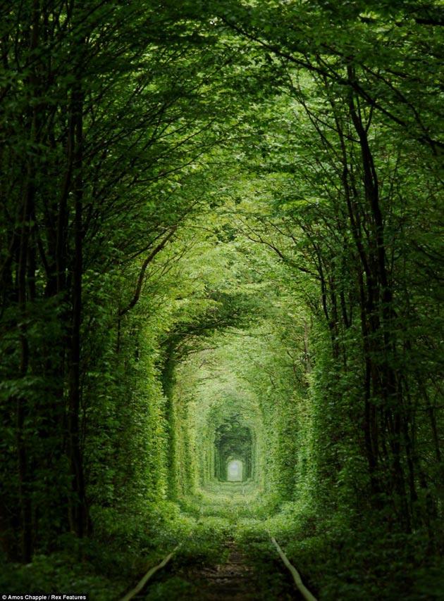 Tunel-ljubavi6