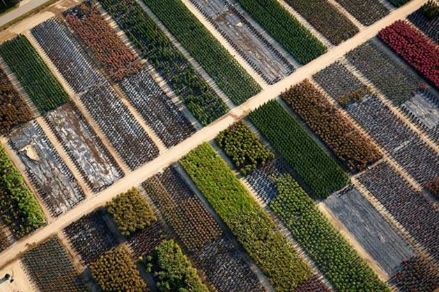 fotografije-iz-zraka11