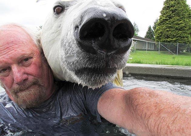covjek-i-polarni-medvjed4