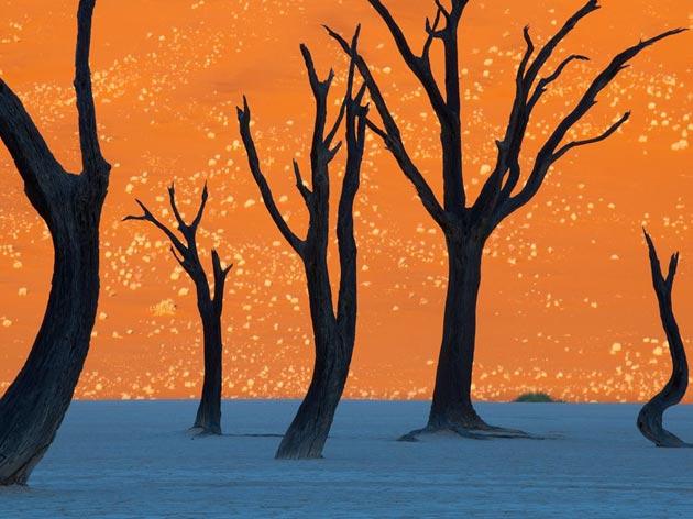 Ovo nije slikarsko djelo nekog umjetnika. Ovo je fotografija DeadVlei-a! (foto: National Geographic)