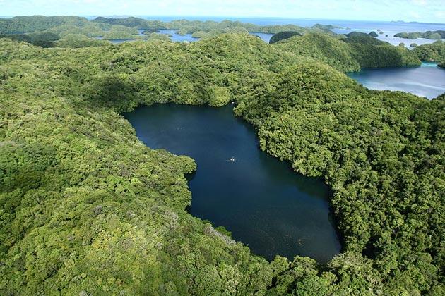 Jezero-Meduza-2