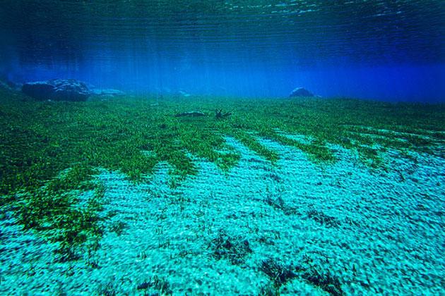 Plavo-jezero6