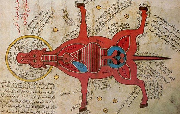 Egipatski prikaz anatomije konja iz 15. stoljeća