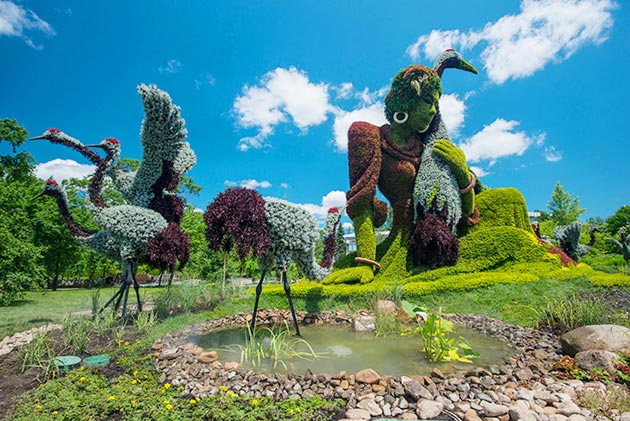 botanicke-skulpture1