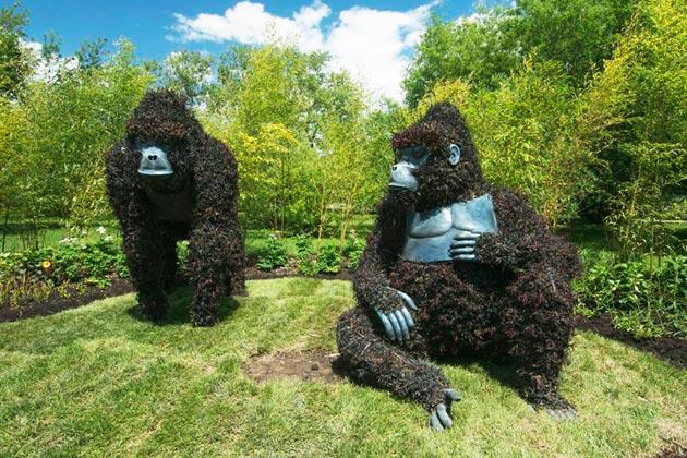 botanicke-skulpture2