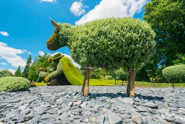 botanicke-skulpture6