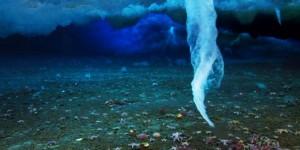 ledeni-prst-smrti