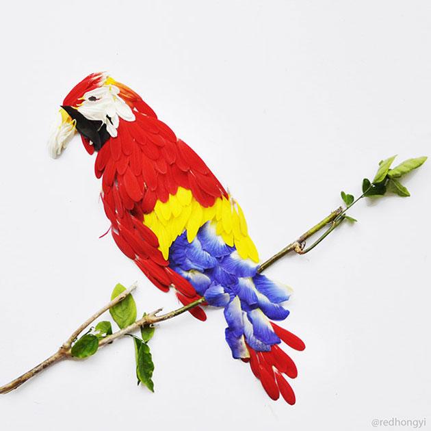 ptica-0