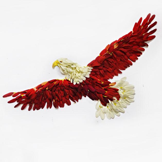 ptica-10