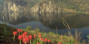 Jezero-Nyos