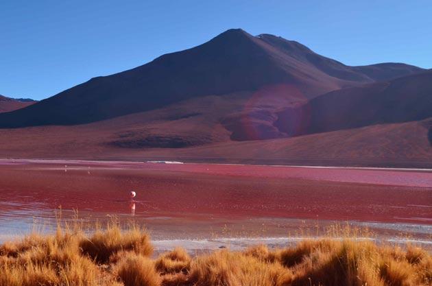 Laguna-Colorada-1