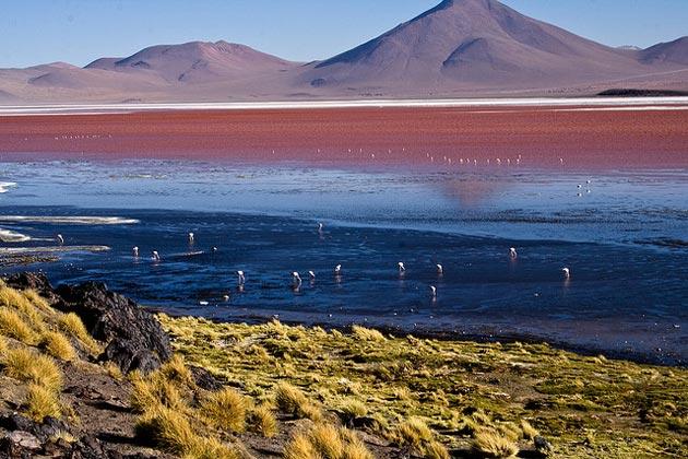 Laguna-Colorada-3
