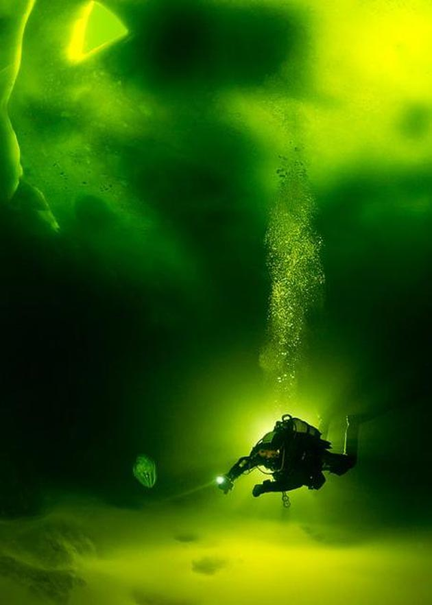podvodne-fotografije-4