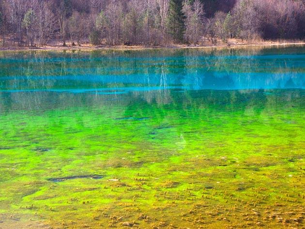 Jezero-pet-cvjetova-1