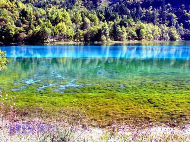 Jezero-pet-cvjetova-7
