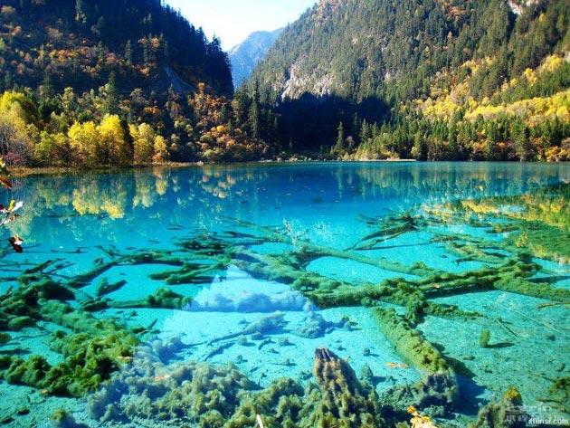 Jezero-pet-cvjetova-8