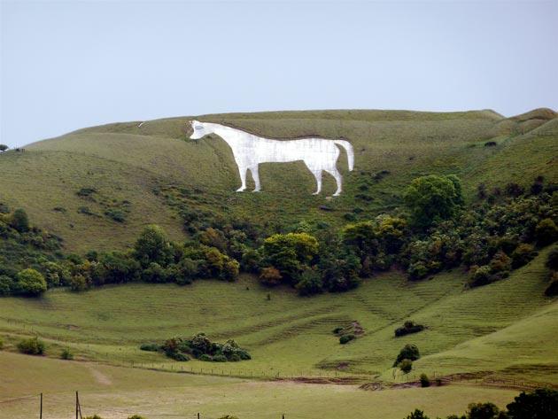 Bijeli konj kod westbury-ja je lik konja urezan u travnate brežuljke, a njegovo porijeko datira iz 18. stoljeća.