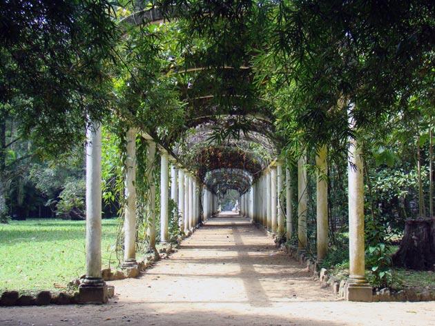 Botanicki-vrt-10