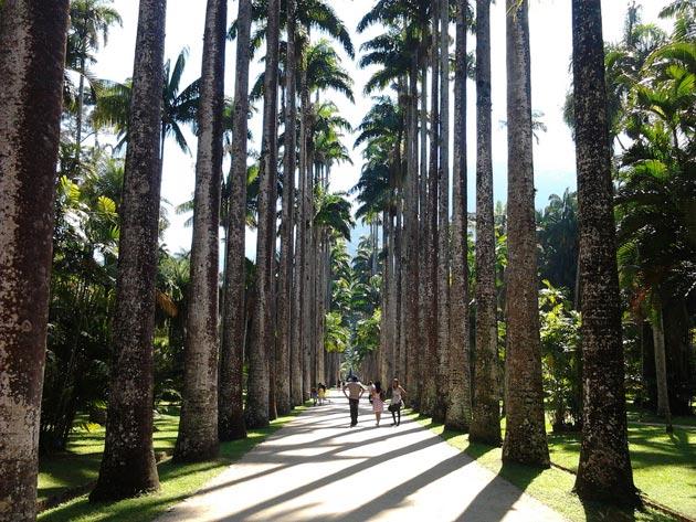 Botanicki-vrt-2