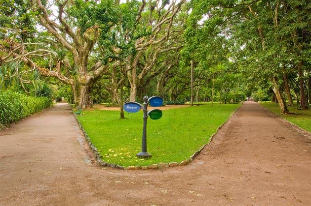 Botanicki-vrt-3