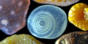pijesak-pod-mikroskopom