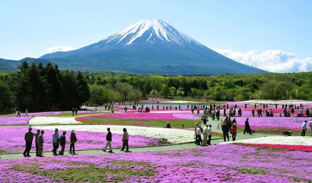 Planina Fuji