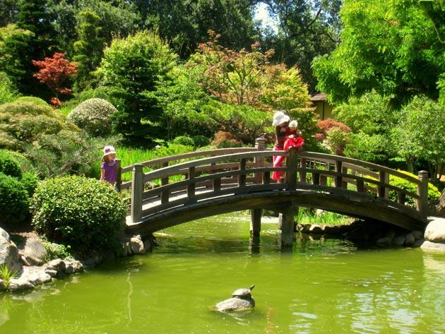 Botanički vrt Hakone