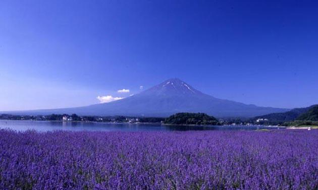 Jezero Saiko