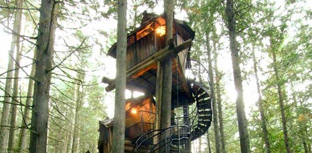 Bajkovita trospratna kućica na drvetu i kanadska Čarobna šuma