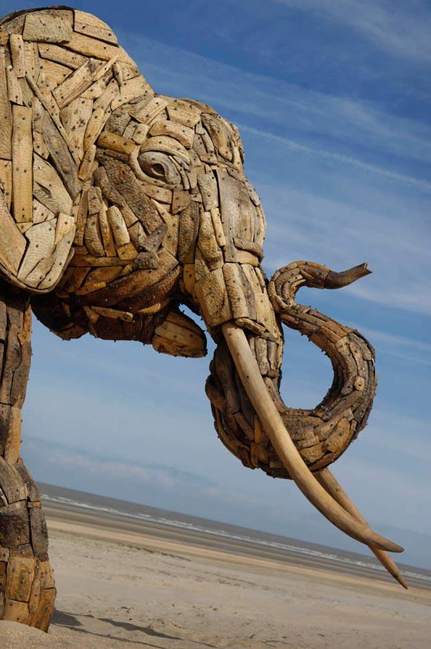slon-12