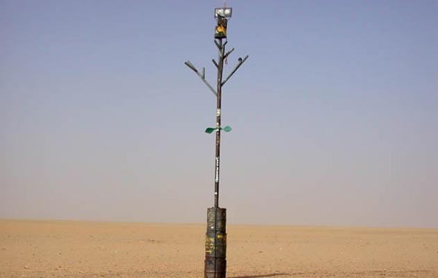 Drvo-Tenere-2