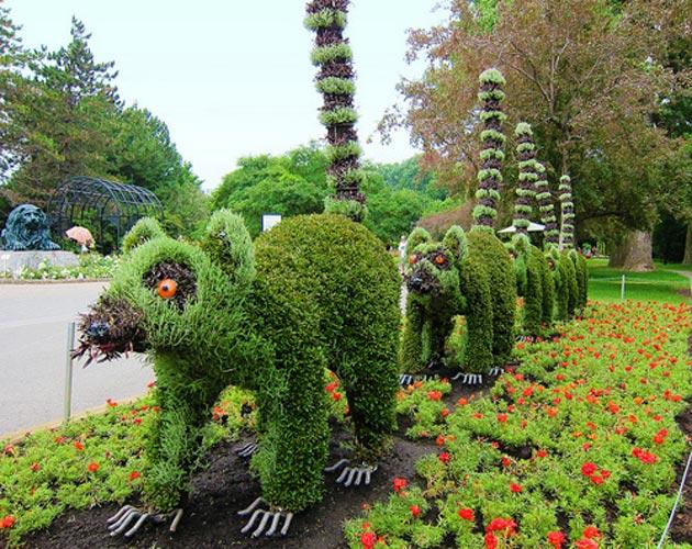 Botanicki-vrt-13