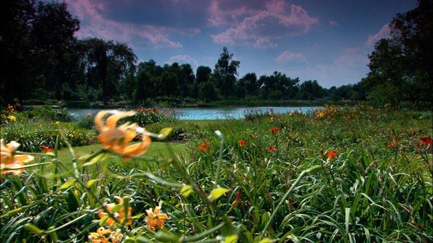 Botanicki-vrt-4