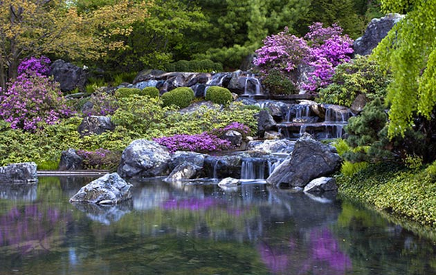 Kanada - Page 3 Botanicki-vrt-8