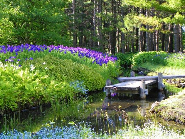 Botanicki-vrt-9