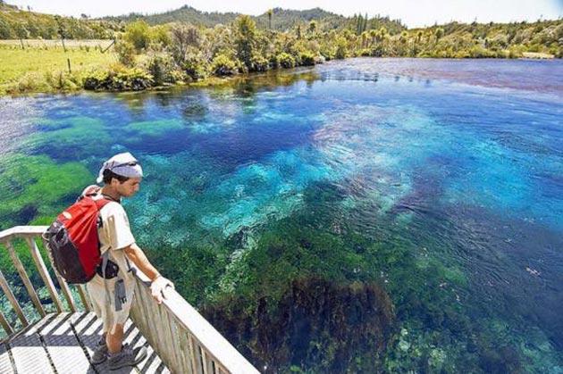 Te-Waikoropupu-Springs-3