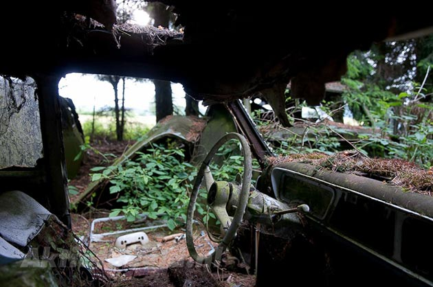 auto-groblje-9