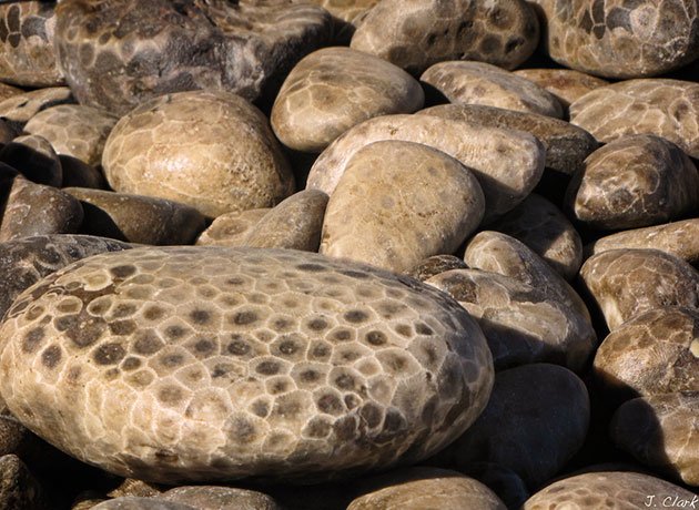 Petoskey-kamenje-2