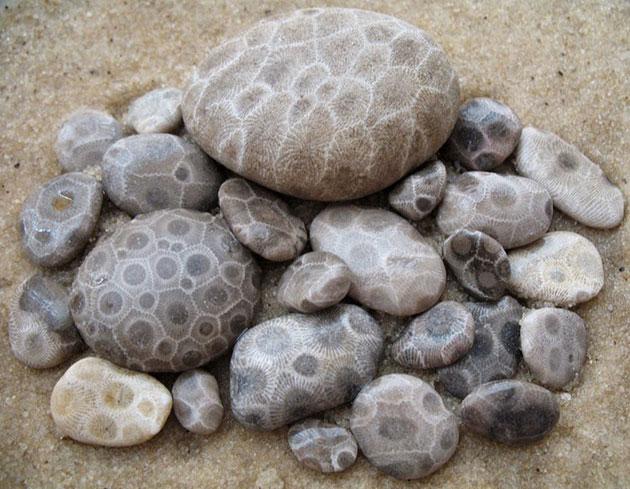 Petoskey-kamenje-7